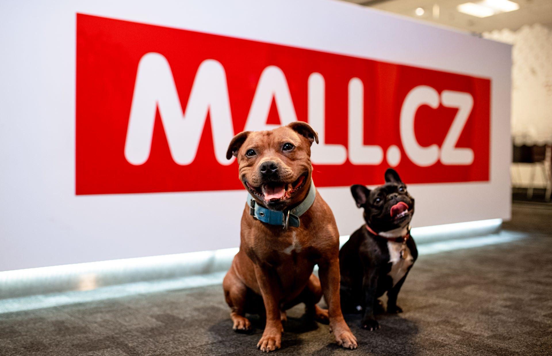 MALL Group šla v roce 2020 do zisku, obrat činil 21 miliard